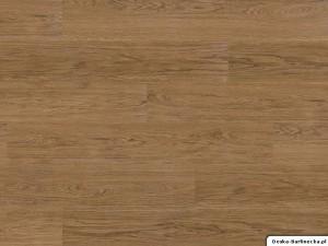 Wicanders panele winylowe Hydrocork Elegant Oak B5R4001