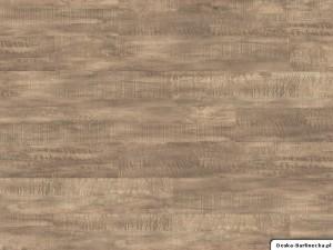 Wicanders panele winylowe Hydrocork Claw Brass Oak B5V2001