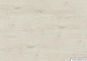 Ter Hürne Panele Winylowe Compact F01 Dąb Skagen Biały