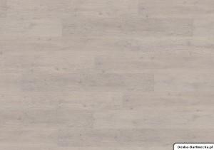 Ter Hürne Panele Winylowe Compact F03 Dąb Helsinki Biały