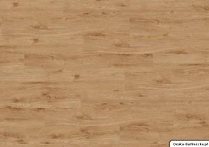 Ter Hürne Panele Winylowe Compact G04 Dąb York Brązowy